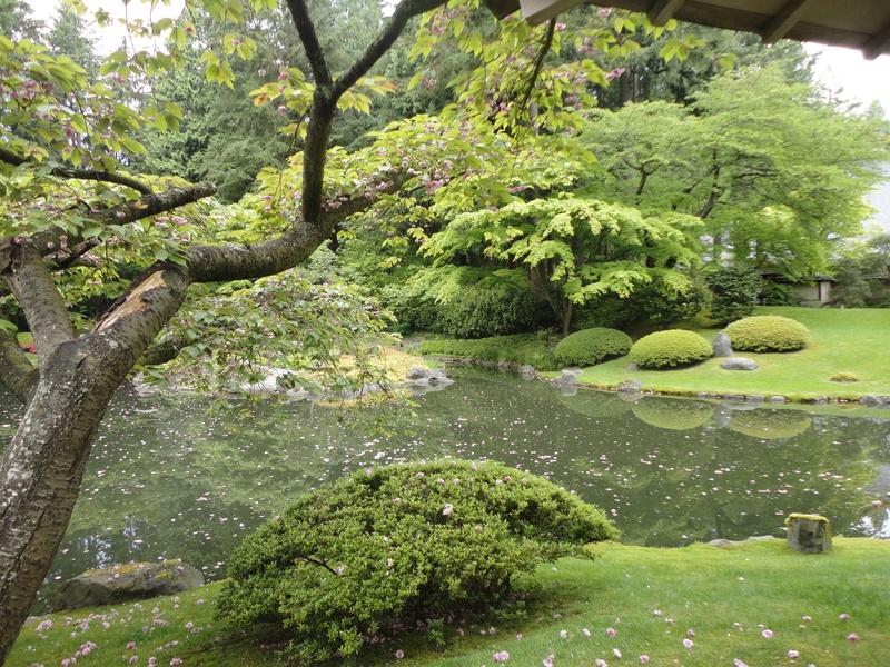 Japanese Garden - UBC