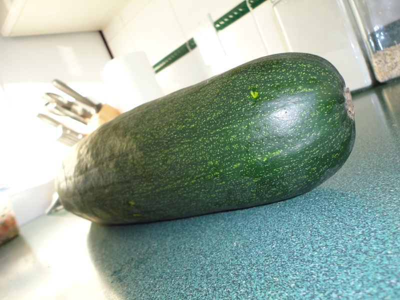 And one more giant zucchini