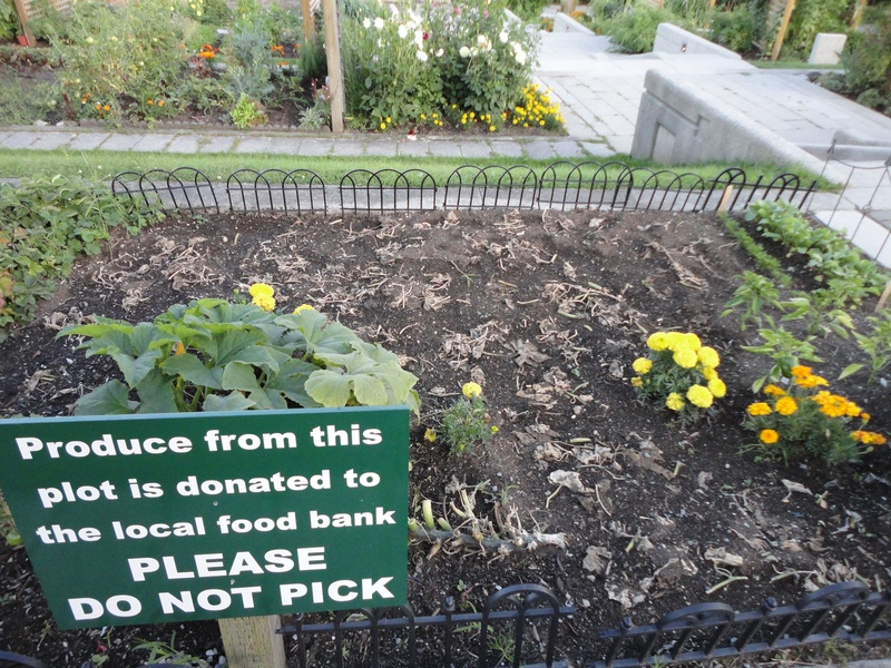 Food bank plot